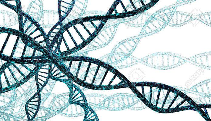 Dlaczego warto wykonywać badania genetyczne?