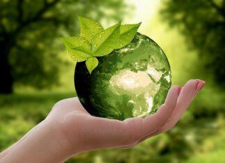 Zero waste może uratować planetę
